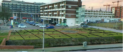 Afbeelding met gras, buiten, gebouw, groen  Automatisch gegenereerde beschrijving